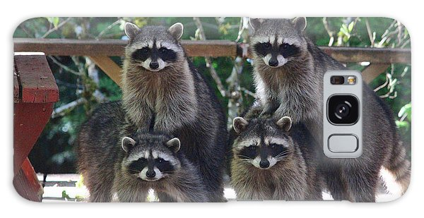 Cheerleading Raccoons Galaxy Case