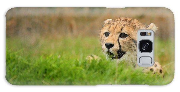 Cheetah Cub Galaxy Case