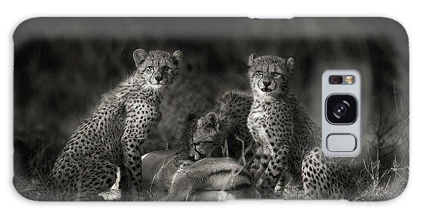 Cheetah Cubs Galaxy Case