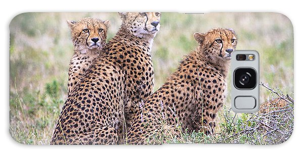 Cheetah Family Galaxy Case
