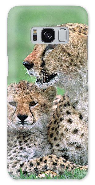 Cheetah Mother And Cub Galaxy Case by Yva Momatiuk John Eastcott