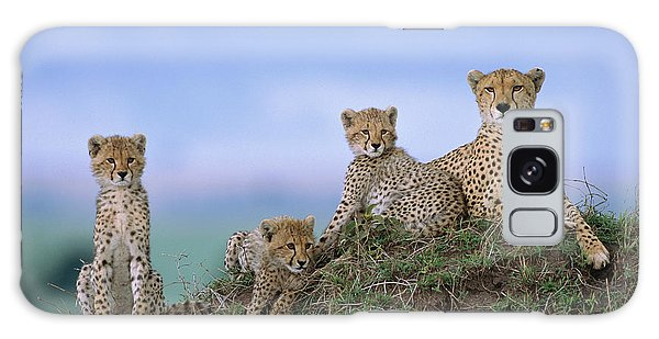 Cheetah Mother And Cubs Masai Mara Galaxy Case by Yva Momatiuk John Eastcott