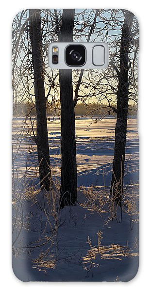 Chena River Trees Galaxy Case by Cathy Mahnke