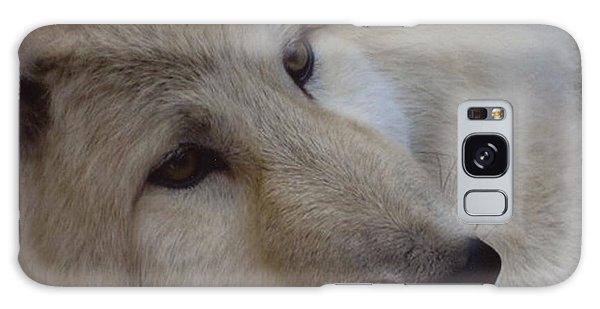 Montana Wolf  Galaxy Case