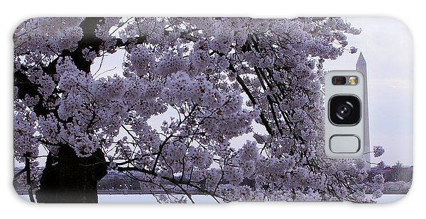 Cherry Blossom Special Galaxy Case by Myrna Bradshaw