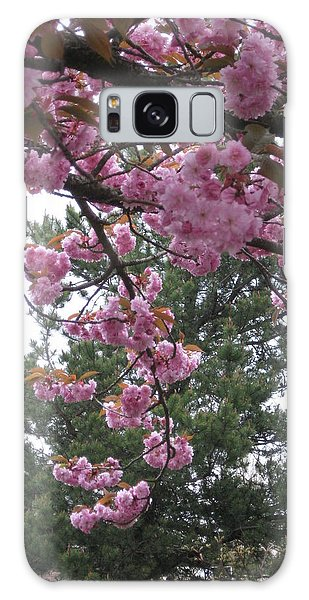 Cherry Blossoms 1 Galaxy Case