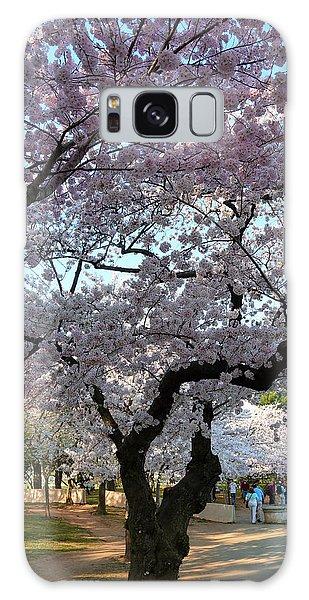 Cherry Blossoms 2013 - 044 Galaxy Case