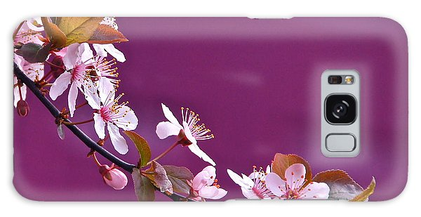 Cherry Blossoms And Plum Door Galaxy Case