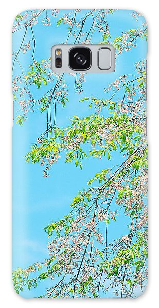 Cherry Blossoms Falling Galaxy Case by Rachel Mirror