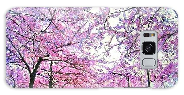 Cherry Trees In Washington Dc Galaxy Case by Marie-Line Vasseur