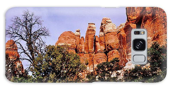 Chesler Park Pinnacles Galaxy Case