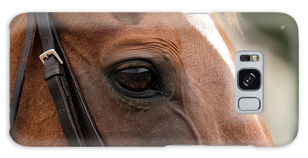 Chestnut Horse Eye Galaxy Case