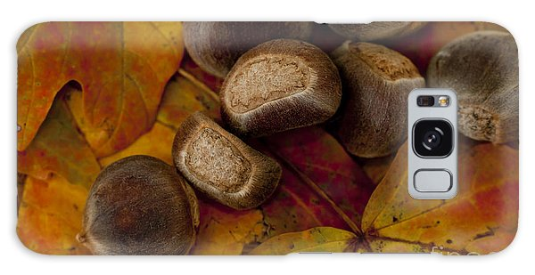 Chestnuts And Fall Leaves Galaxy Case