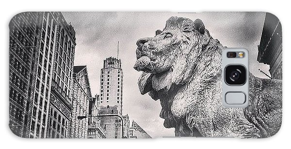 Art Institute Of Chicago Lion Picture Galaxy Case