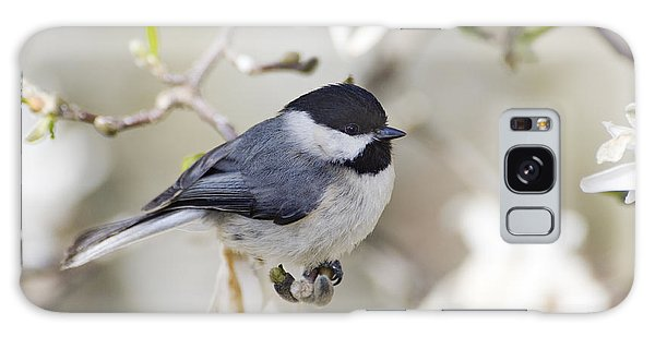 Feather Stars Galaxy Case - Chickadee And Magnolia - D008970 by Daniel Dempster