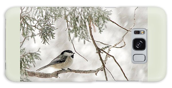 Chickadee In Snowstorm Galaxy Case by Paula Guttilla