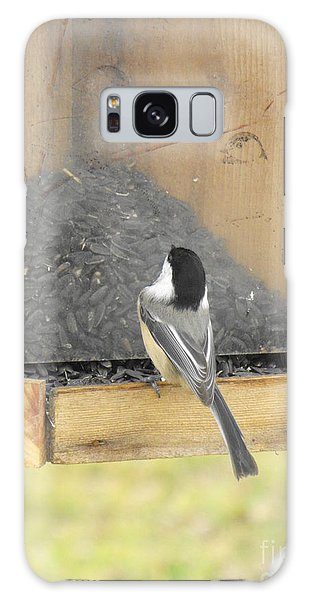 Chickadee Eating Lunch Galaxy Case