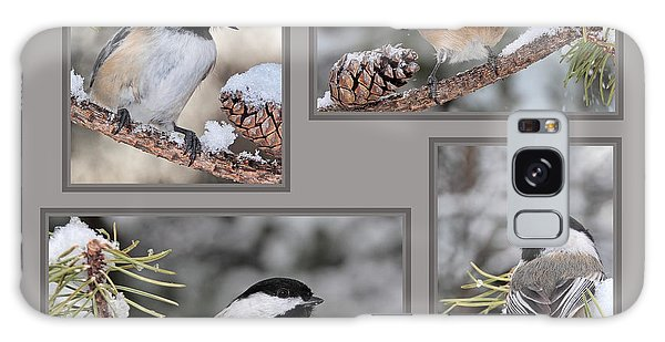 Chickadees In Winter Galaxy Case