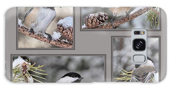 Chickadees In Winter Galaxy Case