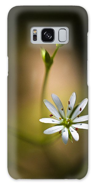 Chickweed Blossom And Bud Galaxy Case by Marty Saccone