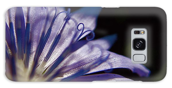 Chicory Galaxy Case by Tim Good
