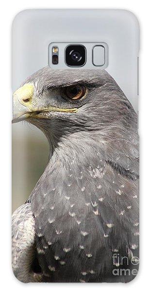 Chilean Eagle Galaxy Case