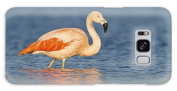 Chilean Flamingo Galaxy Case by Ronald Kamphius