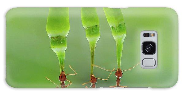 Ant Galaxy Case - Chili Cilider Team by Yahya Taufikurrahman