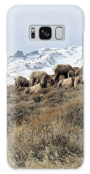 Chimney Rock Rams Galaxy Case