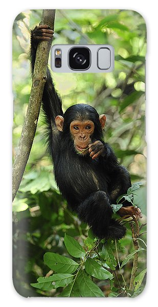 Chimpanzee Baby On Liana Gombe Stream Galaxy Case