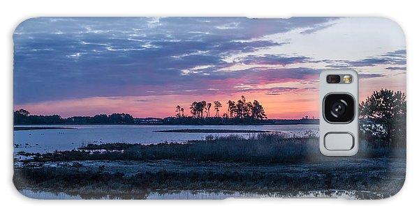 Chincoteague Wildlife Refuge Dawn Galaxy Case