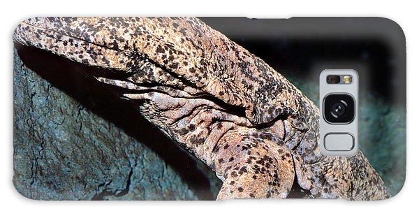 Chinese Giant Salamander Galaxy Case by Wernher Krutein