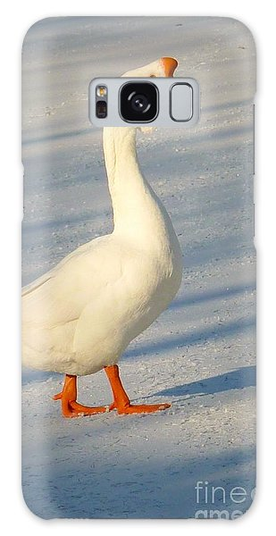 Chinese Goose Winter Galaxy Case by Susan Garren
