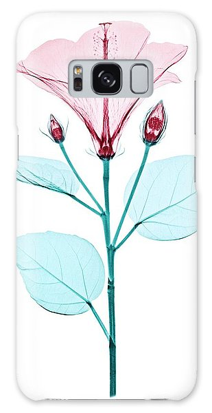Hibiscus Galaxy Case - Chinese Hibiscus Flower by Brendan Fitzpatrick