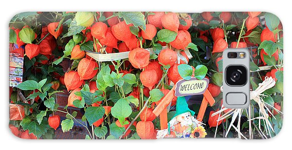 Chinese Lantern Plant Galaxy Case by Gerry Bates
