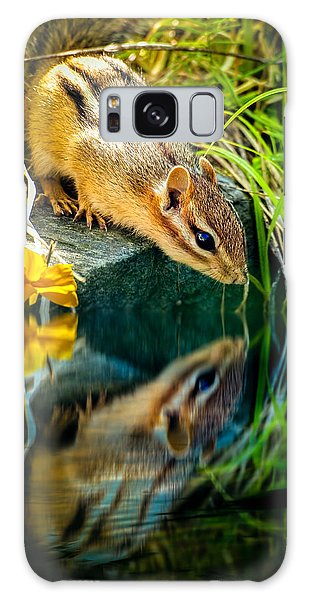 Chipmunk Reflection Galaxy Case by Bob Orsillo