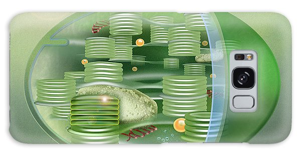 Chloroplast - Basis Of Life - Plant Cell Biology - Chloroplasts Anatomy - Chloroplasts Structure Galaxy Case by Urft Valley Art