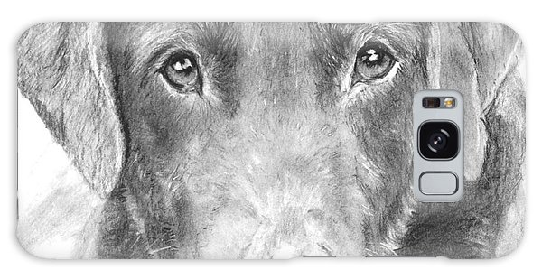Chocolate Lab Sketched In Charcoal Galaxy Case by Kate Sumners