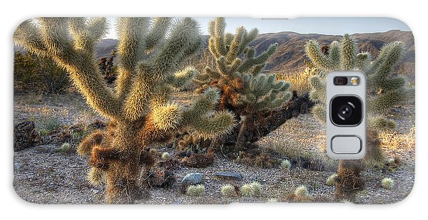 Cholla Cactus Galaxy Case