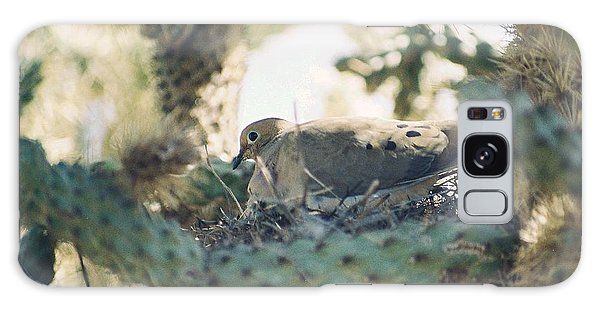 Cholla Dove Galaxy Case