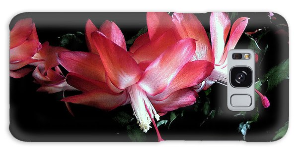 Christmas Cactus 1 Galaxy Case