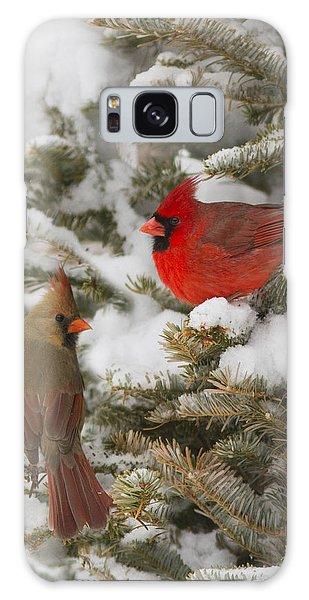 Christmas Card With Cardinals Galaxy Case by Mircea Costina Photography