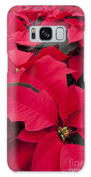 Galaxy Case - Christmas Flowers by Patty Colabuono