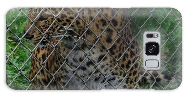Christmas Leopard I Galaxy Case