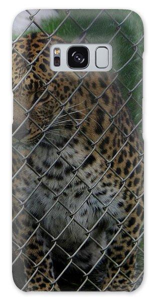 Christmas Leopard II Galaxy Case