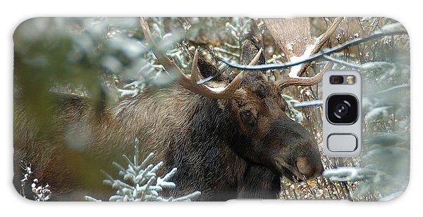 Christmas Moose Galaxy Case