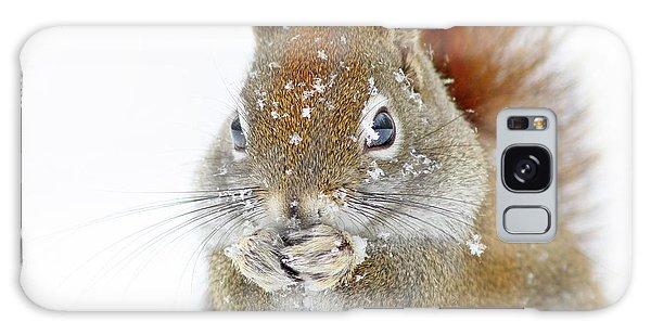 Squirrel Galaxy Case - Christmas Squirrel by Mircea Costina