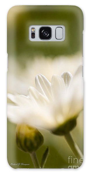 Chrysanthemum Flowers Galaxy Case
