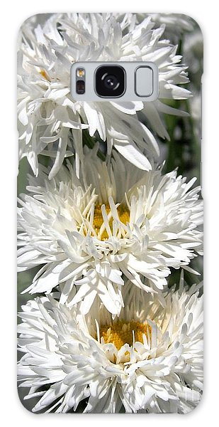Chrysanthemum Named Crazy Daisy Galaxy Case by J McCombie