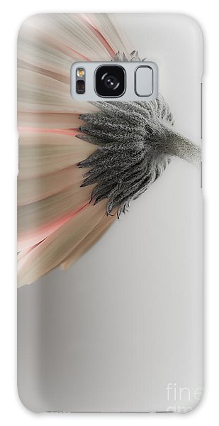 Chrysanthemum Petals 1 Galaxy Case